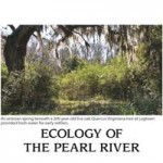ecologyFinal